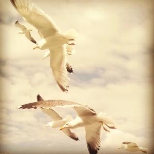 InstagramCapture_0cc2dfac-fafd-45c5-be1e-1e6215a27ba8
